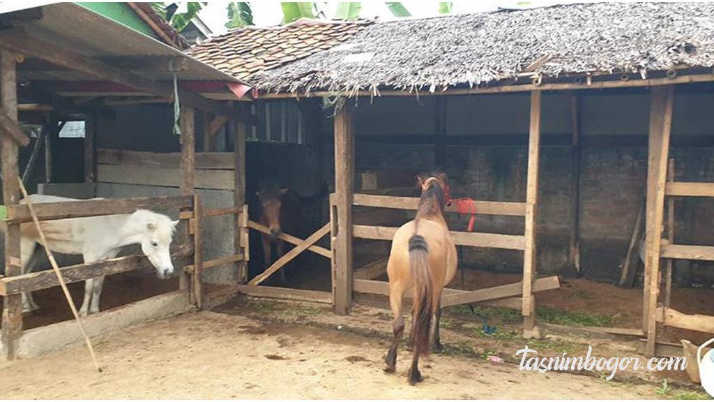 waru farm land