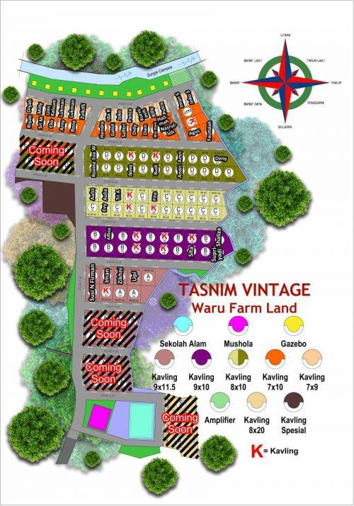 tasnim-vintage-siteplan